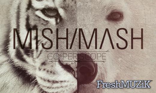 Go Periscope - MishMash